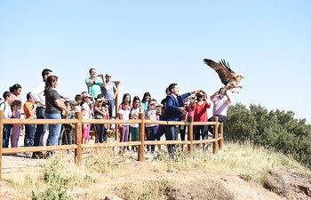 El consejero de Desarrollo Sostenible, José Luis Escudero, participa, en el Cerro de Noez, en la liberación de dos águilas imperiales. (Fotos: José Ramón Márquez // JCCM).