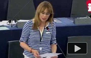 """Vallina: """"Los fondos de cohesión deben reducir las desigualdades, no fortalecer el mercado único"""""""