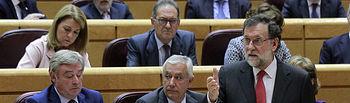 El presidente del Gobierno, Mariano Rajoy, durante su intervención en la sesión de control al Gobierno celebrada en el Senado.