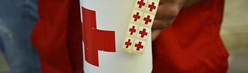 Día de la Banderita - Cruz Roja.