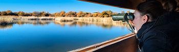 El Gobierno de Castilla-La Mancha promociona el turismo de naturaleza en la Feria Internacional de Turismo Ornitológico. Foto: JCCM.