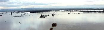 Las Uniones de COAG del Valle del Ebro informan hoy de los daños provocados por la crecida el Ebro en cultivos e instalaciones ganaderas.. Foto: COAG.