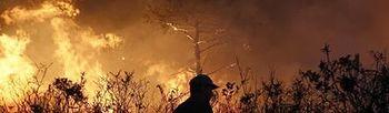 Llamas de un incendio (Foto: Archivo)