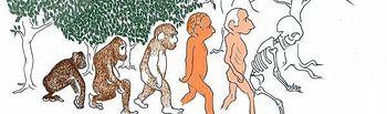 El hombre como amenaza al ecosistema. Fuente: internet