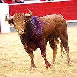 Rubén Pinar - Su segundo toro-7 - Feria Taurina Albacete - 14-09-16 - Para web