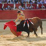 Rubén Pinar - Corrida ASPRONA - 09-06-19. Foto: Marc Descalzo.