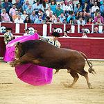 Pedro Jesús Merín en su segundo toro con el capote.
