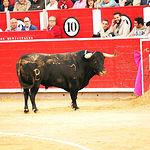 Paco Ureña - Su segundo toro - Feria Taurina Albacete - 14-09-16 - Para web