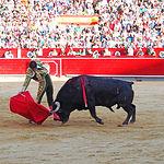 Perera - Su primer toro-5- 10-09-16