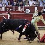 Francisco de Manuel - Feria Taurina - 11-09-18 - Foto: María Vázquez