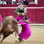 Jorge Cordones con el capote en su segundo toro.