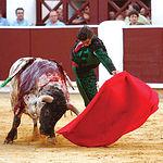 Morante de la Puebla demostró su clase y elegancia, pero su reciente cogida le impidió rendir al máximo en Albacete.