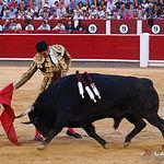 Cayetano - Segundo toro - Corrida 17-09-17