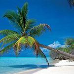 El cambio climático provocará que los destinos turísticos cambien debido a las olas de calor en verano.