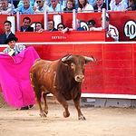 Paco Ureña - Su primer toro-2 - Feria Taurina Albacete - 14-09-16 - Para web