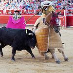 Perera - Picador - Su primer toro-1
