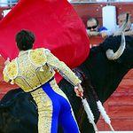 Rubén Pinar - Primer toro - Feria Taurina de Albacete 2017 - 12 de septiembre. Foto José María Mondejar