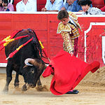 El Juli - Primer toro Feria Taurina Albacete - 17-09-16 - Para Web