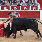 Feria taurina Albacete - El Juli - Su segundo.