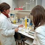 El Grupo de Biología de la Reproducción es el único que se dedica a la inseminación artificial de ciervas en España. En la imagen, algunas de las investigadoras de este Grupo en su laboratorio.