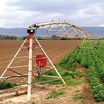 La demanda en sistemas agrarios se convierte en la principal prioridad de SIRIUS. Foto: Riego agrícola mediante pivot.