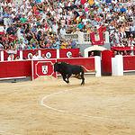 Miguel Ángel Perera - Su segundo toro - 10-09-16.JPG