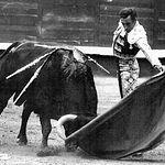 Manuel Amador se retiró en Sevilla en 1972, aunque en 1978 volvió otra vez al mundo del toreo.