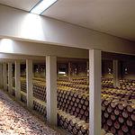 En sólo tres años, los vinos de Finca Antigua han conseguido premios en los más prestigiosos concursos internacionales.