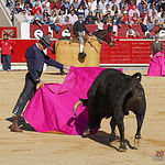 Enrique Ponce - Festival del Cotolengo - 13-05-18