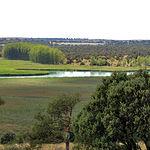 Paisaje del entorno de la Laguna de los Ojos de Villaverde.