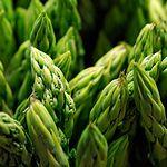 Agricultura Biodinámica.