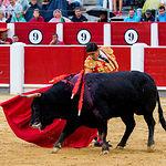 Luis David Adame - Su segundo toro - Corrida Feria de Albacete del 13-09-2016-2
