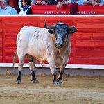 José María Manzanares - Su primer toro - Feria Albacete - 16-09-16