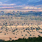 El paisaje es un interesantísimo reto empresarial en facetas variadas de la economía, no sólo en las relativas al turismo. Foto: Parque Nacional de Cabañeros, entre las provincias de Ciudad Real y Toledo.