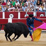 Segundo toro de Cayetano Rivera en la Corrida Benéfica de Asprona del 11 de junio de 2017