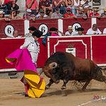 Toro Lagartijo - Ganadería La Reina - Joselito - Feria Taurina Albacete - 08-09-19-11 - Rubén Pinar.