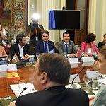 Conferencia Sectorial de Agricultura y Desarrollo Rural y el Consejo Consultivo de Política Agrícola.