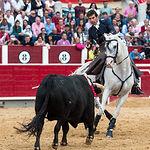 Sergio Galán - Rejones Feria Taurina Albacete - 14-09-19 - Foto: La Taurina Manchega
