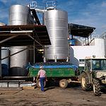 A pesar de haber tenido un mal año agrario, la Región ha crecido más que el resto de socios de la zona. En la fotografía, cooperativa vitivinícola en la provincia de Albacete.