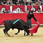 Pedro Monteagudo - Escuela Taurina - Clases Prácticas - 21-04-18