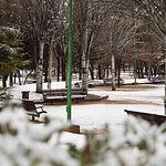 Preparadas 728 quitanieves y 122.062 toneladas de fundentes ante las nevadas de este domingo y el lunes. Imagen de archivo del Parque de Abelardo Sánchez de Albacete nevado.