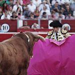 Cristian Pérez - Novillada Feria Taurina Albacete.