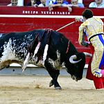 Rubén Pinar - Segundo Toro - Feria Taurina de Albacete 2017 - 12 de septiembre. Foto José María Mondejar