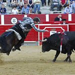 Pablo Hermoso de Mendoza - Corrida ASPRONA - 16-06-18. Foto: Marc Descalzo.