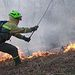 Incendio. Foto: Magrama.