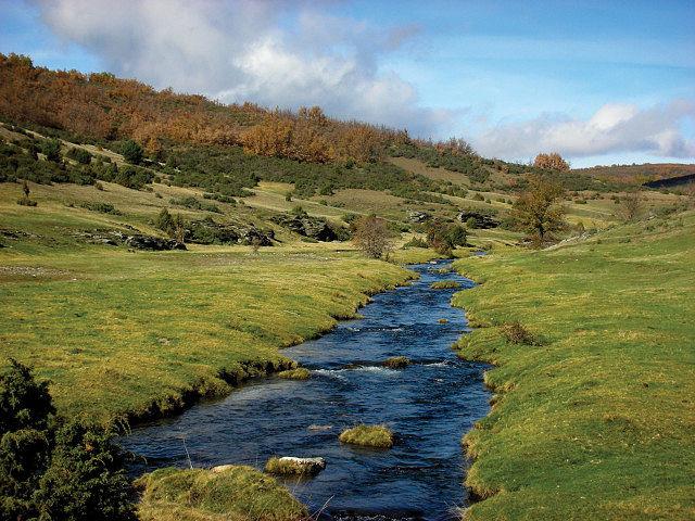 El paraje que forma el río Lillas, a su paso por el Parque Nacional del Hayedo, constituye un deleite para los sentidos.