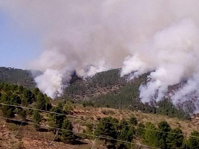 Incendio forestal en Paterna del Madera Foto: Twitter @Paternademadera.