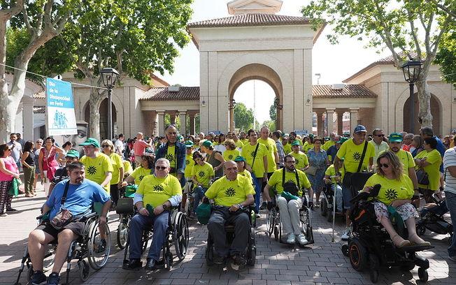 Día de la Discapacidad Feria 2018